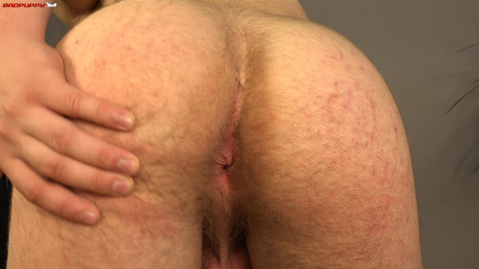 Badpuppy-Kamil-Apolon-Czech-Muscle-Twink-With-Big-Uncut-Cock-Amateur-Gay-Porn-17 Czech Muscle Twink Jerks His Big Uncut Cock For Cash